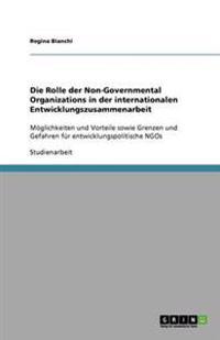 Die Rolle Der Non-Governmental Organizations in Der Internationalen Entwicklungszusammenarbeit