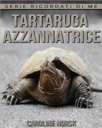 Tartaruga Azzannatrice: Libro Sui Tartaruga Azzannatrice Per Bambini Con Foto Stupende & Storie Divertenti