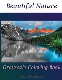 Beautiful Nature Grayscale Coloring Book: Stress Less, Meditation and Mindfulness Your Mind and Very Good Hobby. You Will Feel Like a Professional Art