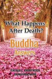 What Happens After Death-Buddha Answers