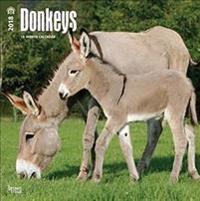 Donkeys 2018 Calendar