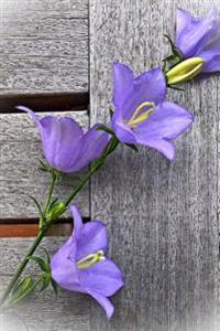 Charming Purple Bellflowers Against a Weathered Fence Journal: 150 Page Lined Notebook/Diary