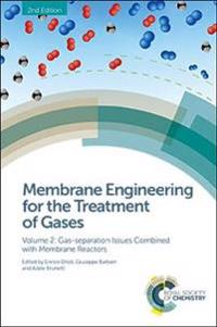 Membrane Engineering for the Treatment of Gases: Volume 2: Gas-Separation Issues Combined with Membrane Reactors