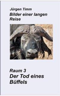 Raum 3 Der Tod Eines Buffels