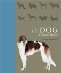 Dog - a natural history