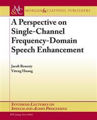 Perspective on Single-Channel Frequency-Domain Speech Enhancement