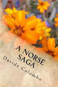 A Norse Saga