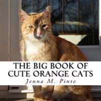 The Big Book of Cute Orange Cats: A Text-Free Book for Seniors and Alzheimer's Patients
