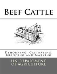 Beef Cattle: Dehorning, Castrating, Branding and Marking