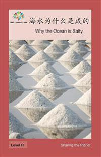 ¿¿¿¿¿¿¿¿: Why the Ocean is Salty