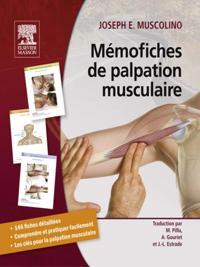 Memofiches de palpation musculaire