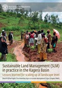 Sustainable land management (SLM)