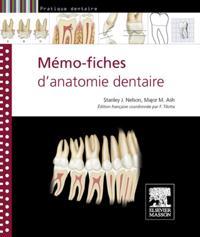 Memo-fiches d'anatomie dentaire
