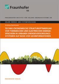 Techno-ökonomische Strukturoptimierung von thermischen und elektrischen Energiespeichern in urbanen Energieversorgungssystemen auf Basis von Geoinformationen