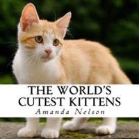 The World's Cutest Kittens: A Text-Free Book for Seniors and Alzheimer's Patients