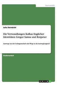 Die Verwandlungen Kafkas Fraglicher Identitaten Gregor Samsa Und Rotpeter