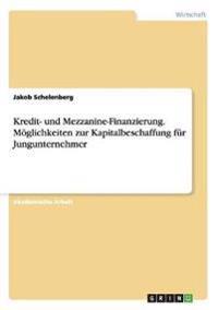 Kredit- und Mezzanine-Finanzierung. Möglichkeiten zur Kapitalbeschaffung für Jungunternehmer