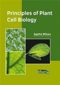Principles of Plant Cell Biology