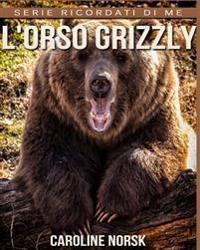 L'Orso Grizzly: Libro Sui L'Orso Grizzly Per Bambini Con Foto Stupende & Storie Divertenti