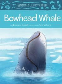 Animals Illustrated: Bowhead Whale (English)