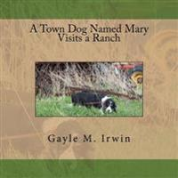A Town Dog Named Mary Visits a Ranch