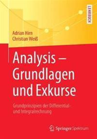 Analysis - Grundlagen Und Exkurse