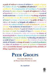 Peer Groups