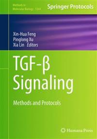 TGF-ß Signaling