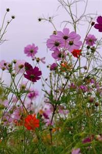 Colorful Cosmos Flowers Garden Blooms Journal: 150 Page Lined Notebook/Diary