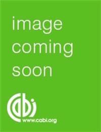 Computer Assisted Identification Scheme for Terverticillate Penicillium I