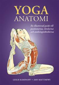 Yoga : anatomi