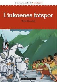 Inkariket - Terje Stenstad - böcker (9788202361556)     Bokhandel