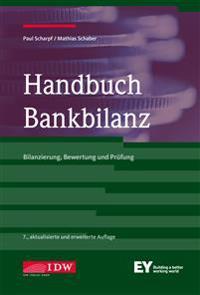 Handbuch Bankbilanz