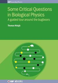Some Critical Questions in Biological Physics: A Guided Tour Around the Bugbears