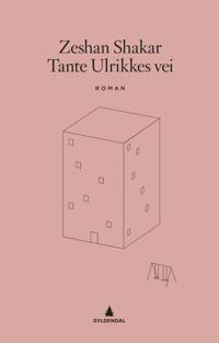 Tante Ulrikkes vei (E-bok)