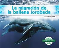 La Migración de la Ballena Jorobada (Humpback Whale Migration) (Spanish Version)
