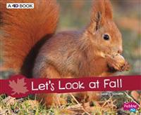 Let's Look at Fall: A 4D Book