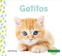 Gatitos (Kittens) (Spanish Version)