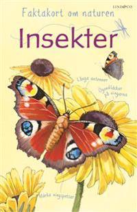 Faktakort om naturen : Insekter