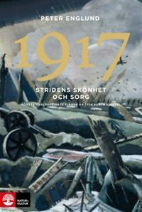 1917 Stridens skönhet och sorg : Första världskrigets fjärde år