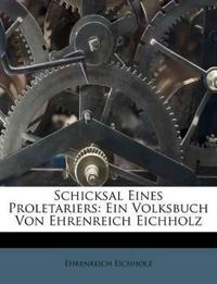 Schicksal Eines Proletariers: Ein Volksbuch Von Ehrenreich Eichholz