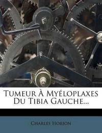 Tumeur À Myéloplaxes Du Tibia Gauche...