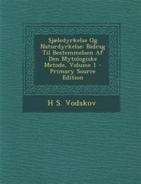 Sjaeledyrkelse Og Naturdyrkelse: Bidrag Til Bestemmelsen AF Den Mytologiske Metode, Volume 1 - Primary Source Edition