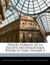 Procès-Verbaux De La Société Archéologique D'eure-Et-Loir, Volume 3