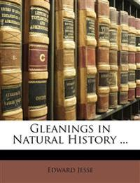 Gleanings in Natural History ...