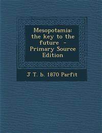 Mesopotamia: the key to the future