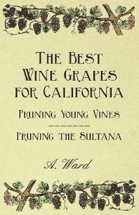The Best Wine Grapes for California - Pruning Young Vines - Pruning the Sultana