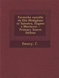 Formiche raccolte da Elio Modigliani in Sumatra, Engano e Mentawei. - Primary Source Edition