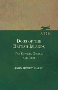 Dogs Of The British Islands. The Setters.Gordon And Irish.
