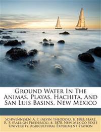 Ground Water In The Animas, Playas, Hachita, And San Luis Basins, New Mexico
